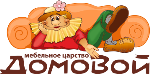 domovoy35